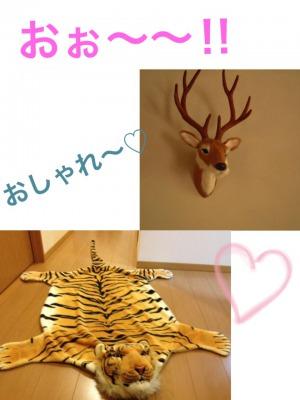 s_2uyfo.JPG